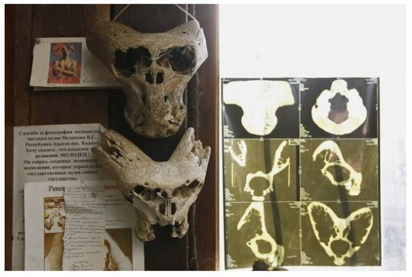 alien skulls found in ancient dolmen